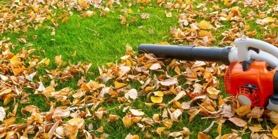 leaf blower problems