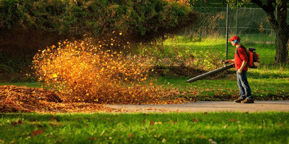 Buying a leaf blower